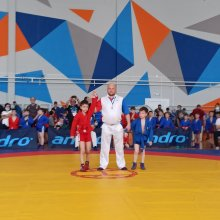 Фестиваль спортивной борьбы и самбо